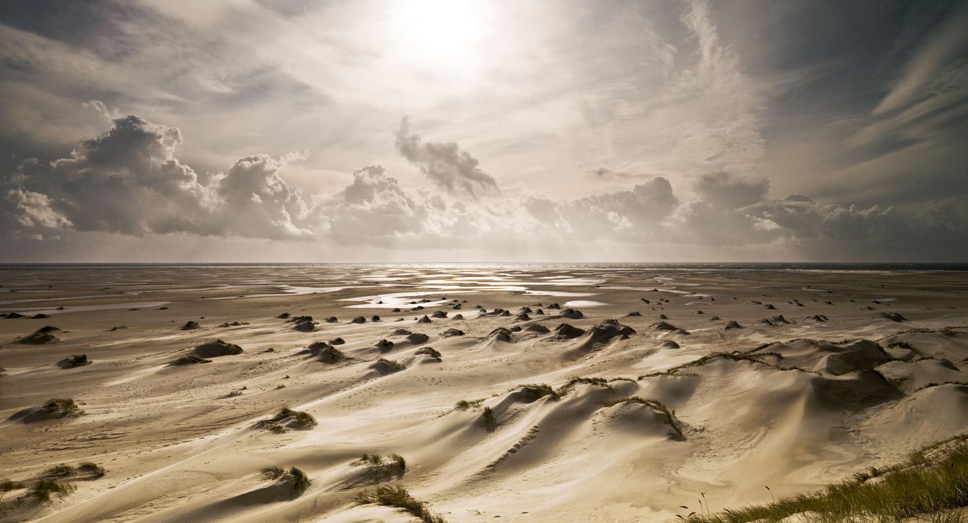 2008 10 amrum 0202a,sand, beach, desert, landscape, personal work, www.ankeluckmann.com, anke luckmann,