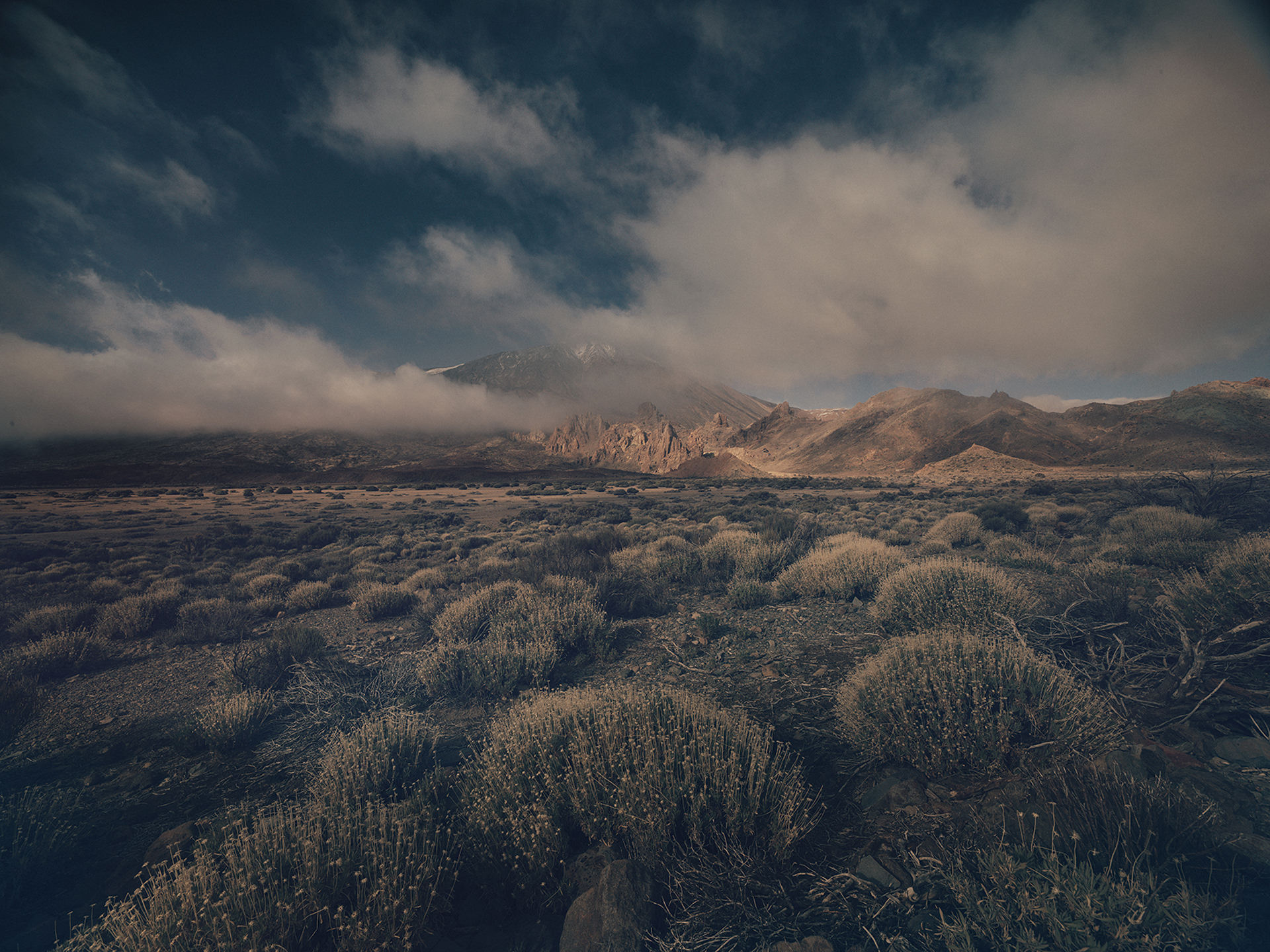 ©ankeluckmann1558, gosee awards, gold , anke luckmann, www.ankeluckmann.com, landscape, volcanic, trey, personal project