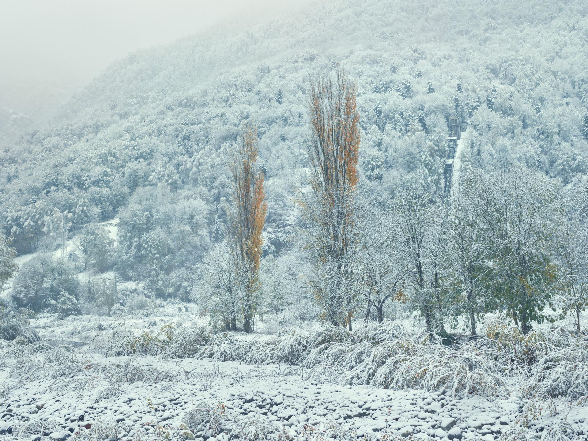 pyrenees, landscape, france, spain, anke luckmann, mountains, www.ankeluckmann.com, trees, white, snow