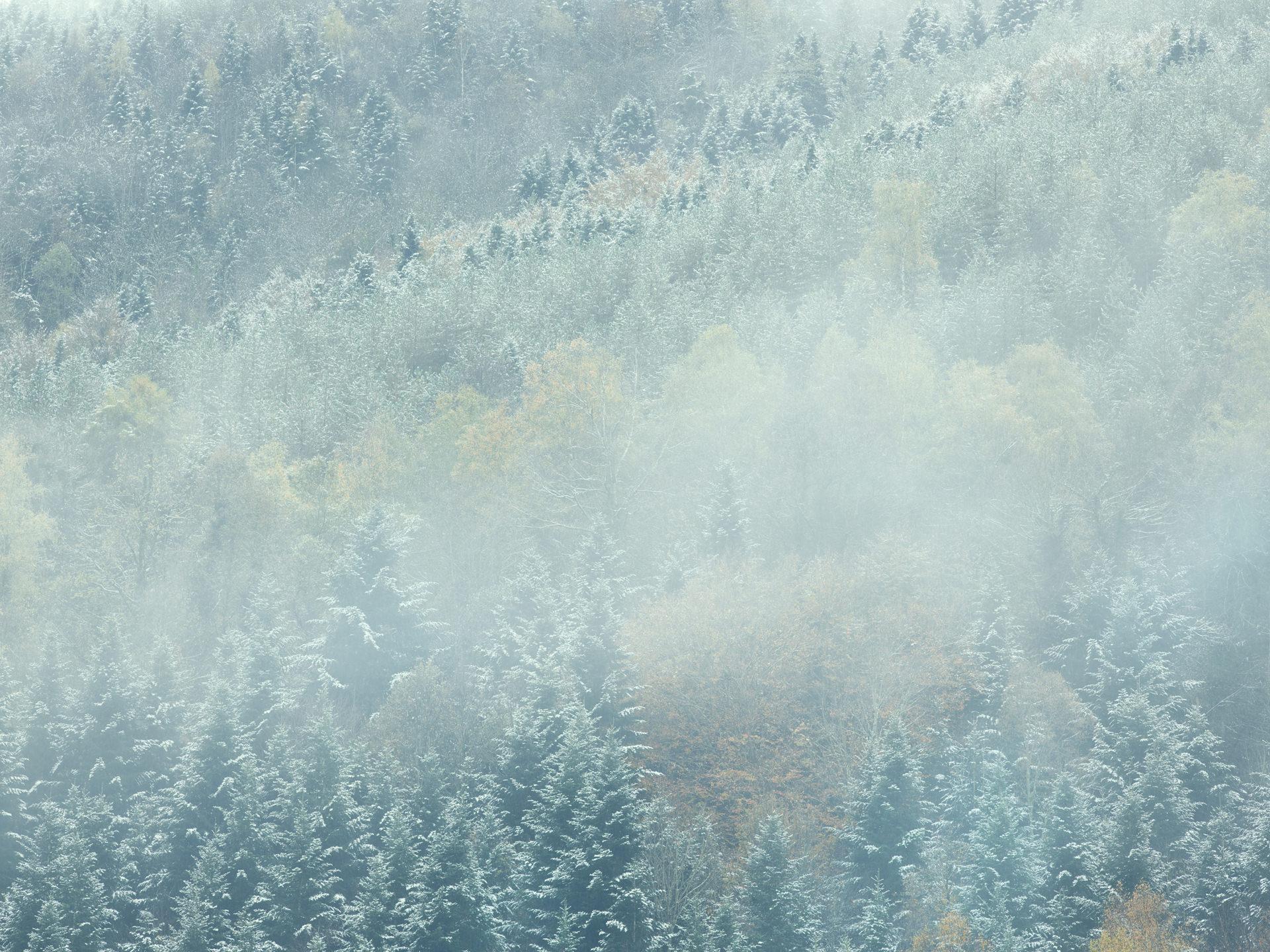 pyrenees, landscape, france, spain, anke luckmann, mountains, www.ankeluckmann.com, trees, white