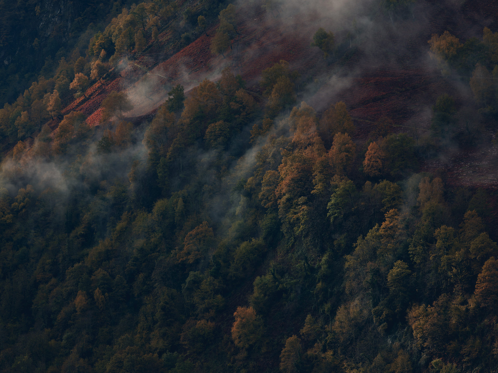 pyrenees, landscape, france, spain, anke luckmann, mountains, www.ankeluckmann.com, trees